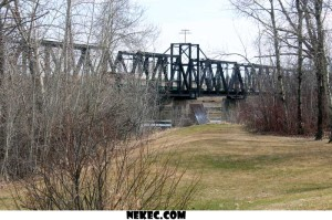 Trees Framing the Traine Bridge